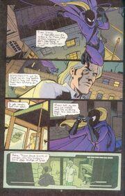Robin 93 (05)
