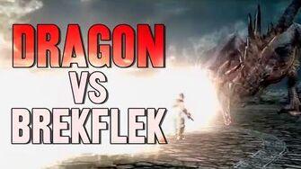 Dragon VS Lil' Brekflek