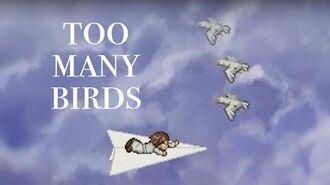 Too Many Birds!