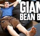 Giant Bean Bag! (Day 2563 - 11/30/16)