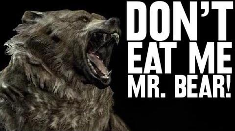 Don't Eat Me Mr. Bear!