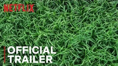 In the Tall Grass Official Trailer Netflix