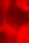 Screen Shot 2019-02-17 at 7.56.11 PM