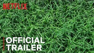 In the Tall Grass Official Trailer Netflix-0