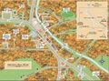 Chester-MillsLarge900x666.jpg