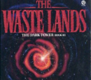 The Waste Lands III 1991