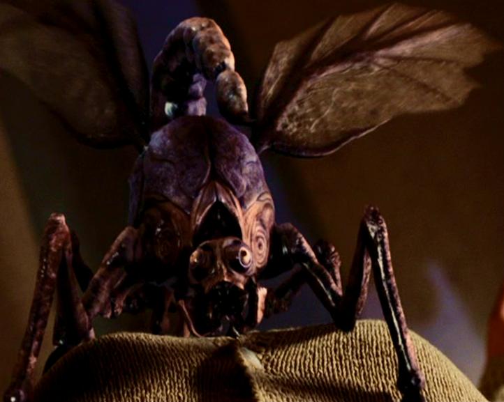Scorpion-Flies