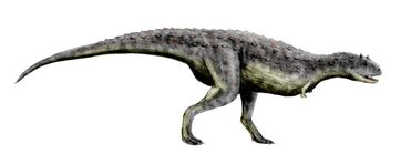 Carnotaurus BW