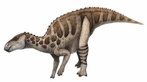Bactrosaurus-Andrey-Atuchin