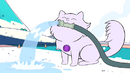 Ametiszt macska