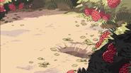 Rose's Scabbard BG 1