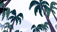 Island Adventure (224)