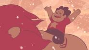 Steven's Lion (243)
