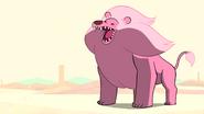 Steven's Lion (049)