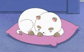 Sleeping Puppycat