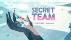 Secret Team 000
