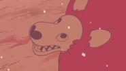 Steven's Lion (245)