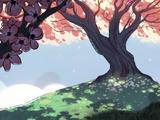 Drzewo Perły
