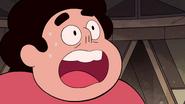 Serious Steven (223)