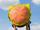Cheeseburger Backpack (merchandise)