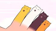 Cat Fingers (138)