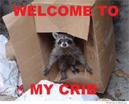 Welcome-to-my-crib-1-