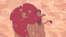 Steven's Lion (246)