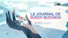 Le journal de Buddy Budwick