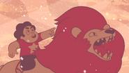 Steven's Lion (250)
