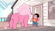 Steven's Lion (122)