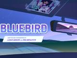 Bluebird (episode)