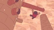 Steven's Lion (239)