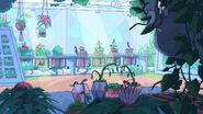 Inside Greenhouse BG