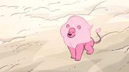 Steven's Lion (126)