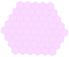 PinkStateFullShield