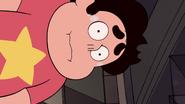 Serious Steven (208)