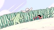 Watermelon Steven (246)