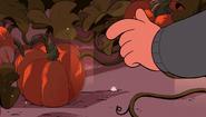 Gem Harvest 031
