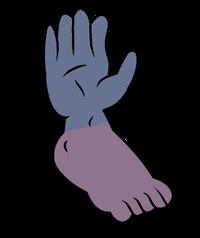 Cluster - Pé - Mão