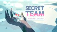 SecretTeam00001
