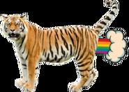 TigerSU