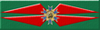 Starfleet Citation for Conspicuous Gallantry Ribbon