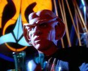Quark (mirror)