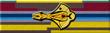 Cardassian War Service Medal
