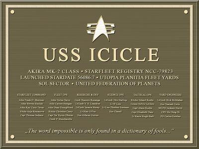 ICICLE-Plakette10b800