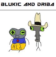 Blukic and driba ems