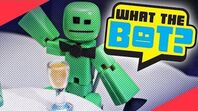 What the Bot? 🏆 - Toy of the Year