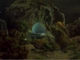 Titan's Personal Underwater Craft