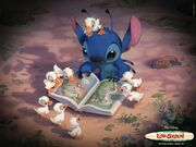 Stitch DucklingS