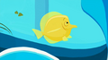 S2 E6 Sonny wants to make fish that looks like Fluffy to eat his own tail again.png